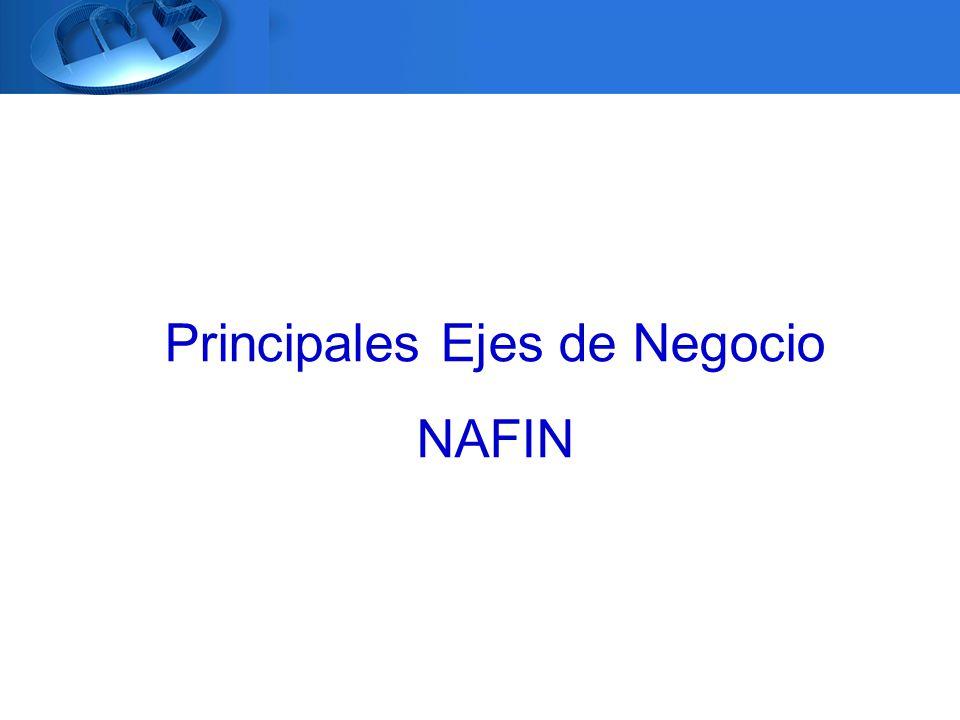 Principales Ejes de Negocio NAFIN