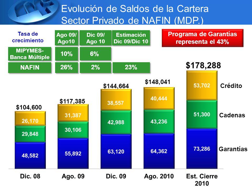 Evolución de Saldos de la Cartera Sector Privado de NAFIN (MDP.) MIPYMES- Banca Múltiple MIPYMES- Banca Múltiple NAFIN Ago 09/ Ago10 Ago 09/ Ago10 26% 10% Dic 09/ Ago 10 Dic 09/ Ago 10 2% 6% 23% Estimación Dic 09/Dic 10 Estimación Dic 09/Dic 10 Tasa de crecimiento Programa de Garantías representa el 43% Crédito Cadenas Garantías $178,288 $148,041 $144,664 $117,385 $104,600