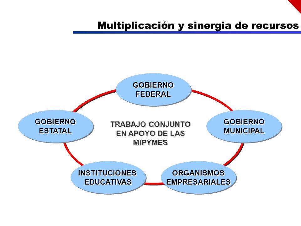Multiplicación y sinergia de recursos GOBIERNOFEDERALGOBIERNOFEDERAL GOBIERNOESTATALGOBIERNOESTATAL ORGANISMOSEMPRESARIALESORGANISMOSEMPRESARIALES GOBIERNOMUNICIPALGOBIERNOMUNICIPAL TRABAJO CONJUNTO EN APOYO DE LAS MIPYMES INSTITUCIONESEDUCATIVASINSTITUCIONESEDUCATIVAS