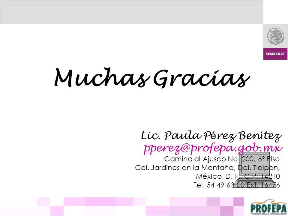 Muchas Gracias Lic. Paula P é rez Ben í tez pperez@profepa.gob.mx Camino al Ajusco No. 200, 6° Piso Col. Jardines en la Montaña, Del. Tlalpan, México,