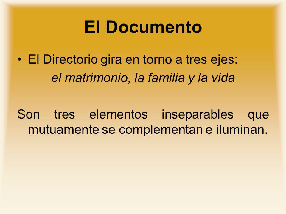 El Documento El Directorio gira en torno a tres ejes: el matrimonio, la familia y la vida Son tres elementos inseparables que mutuamente se complement