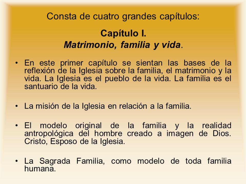 Consta de cuatro grandes capítulos: Capítulo I. Matrimonio, familia y vida. En este primer capítulo se sientan las bases de la reflexión de la Iglesia
