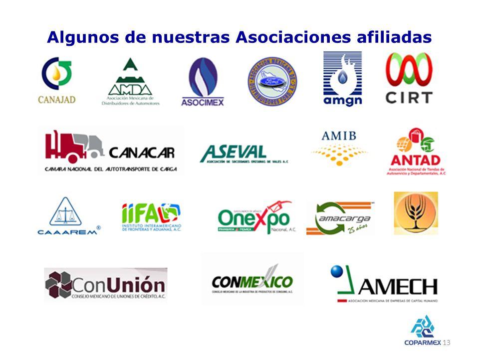 Algunos de nuestras Asociaciones afiliadas 13