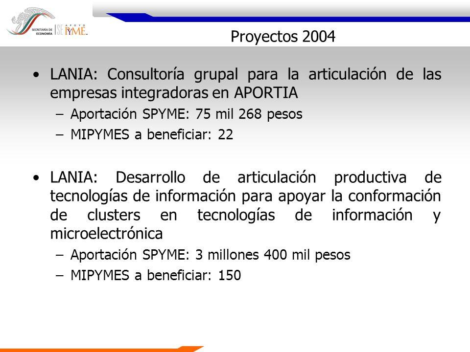 Proyectos 2004 LANIA: Consultoría grupal para la articulación de las empresas integradoras en APORTIA –Aportación SPYME: 75 mil 268 pesos –MIPYMES a b