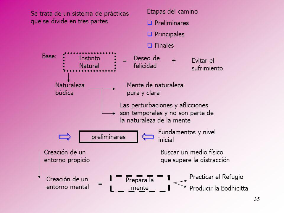 35 Se trata de un sistema de prácticas que se divide en tres partes Instinto Natural preliminares Base: Etapas del camino Preliminares Principales Fin