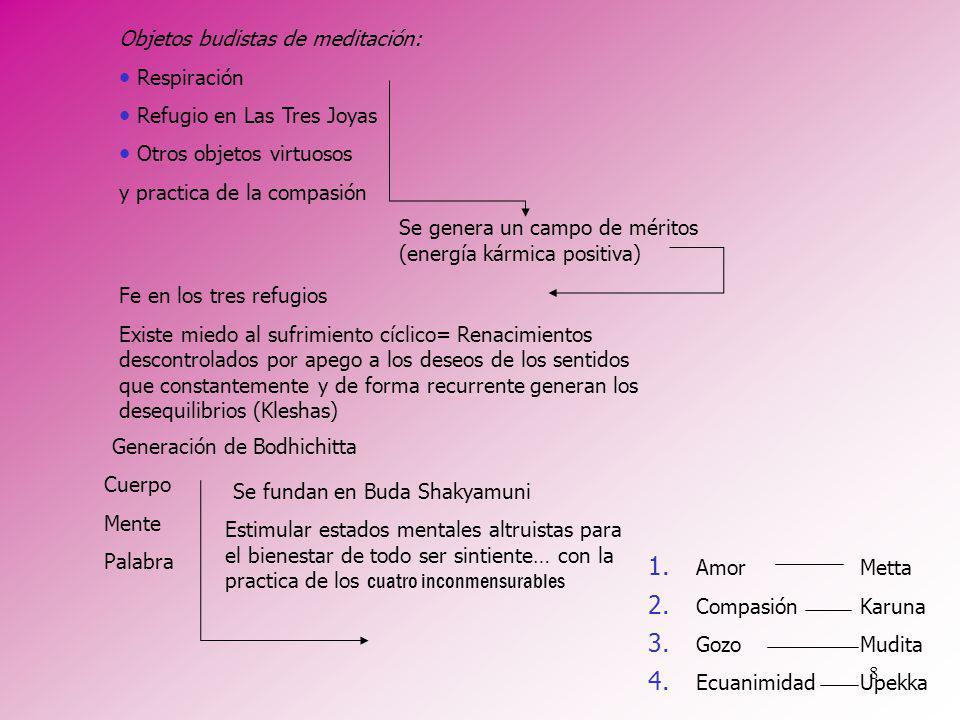 8 Se genera un campo de méritos (energía kármica positiva) Objetos budistas de meditación: Respiración Refugio en Las Tres Joyas Otros objetos virtuos