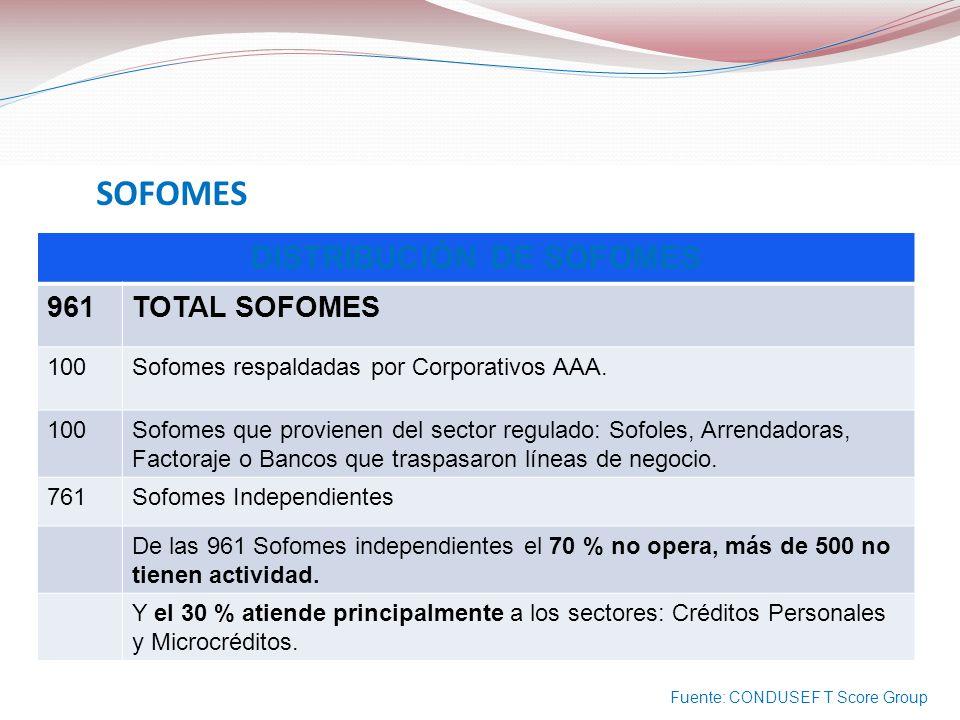 SOFOMES DISTRIBUCIÓN DE SOFOMES 961TOTAL SOFOMES 100Sofomes respaldadas por Corporativos AAA. 100Sofomes que provienen del sector regulado: Sofoles, A