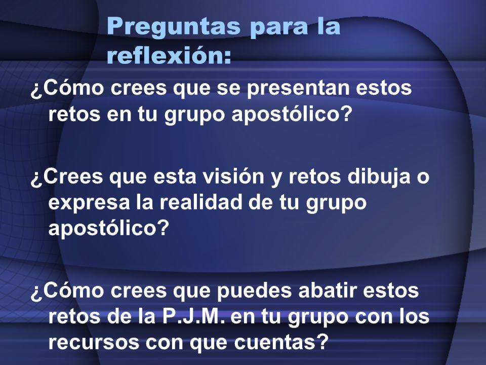 Preguntas para la reflexión: ¿Cómo crees que se presentan estos retos en tu grupo apostólico? ¿Crees que esta visión y retos dibuja o expresa la reali