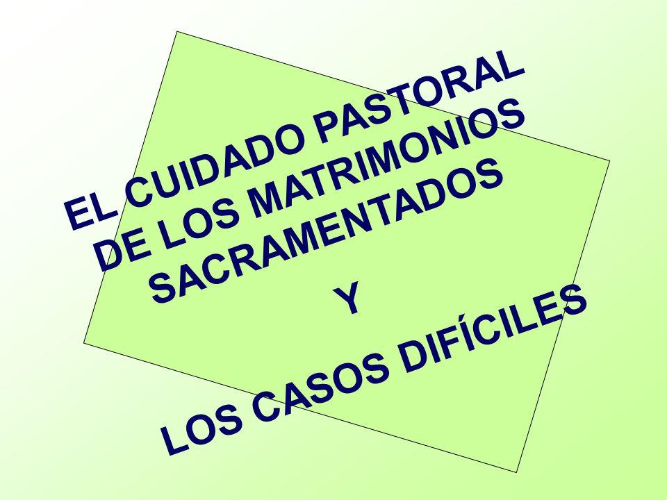 Situaciones difíciles e irregulares que atiende la pastoral familiar.