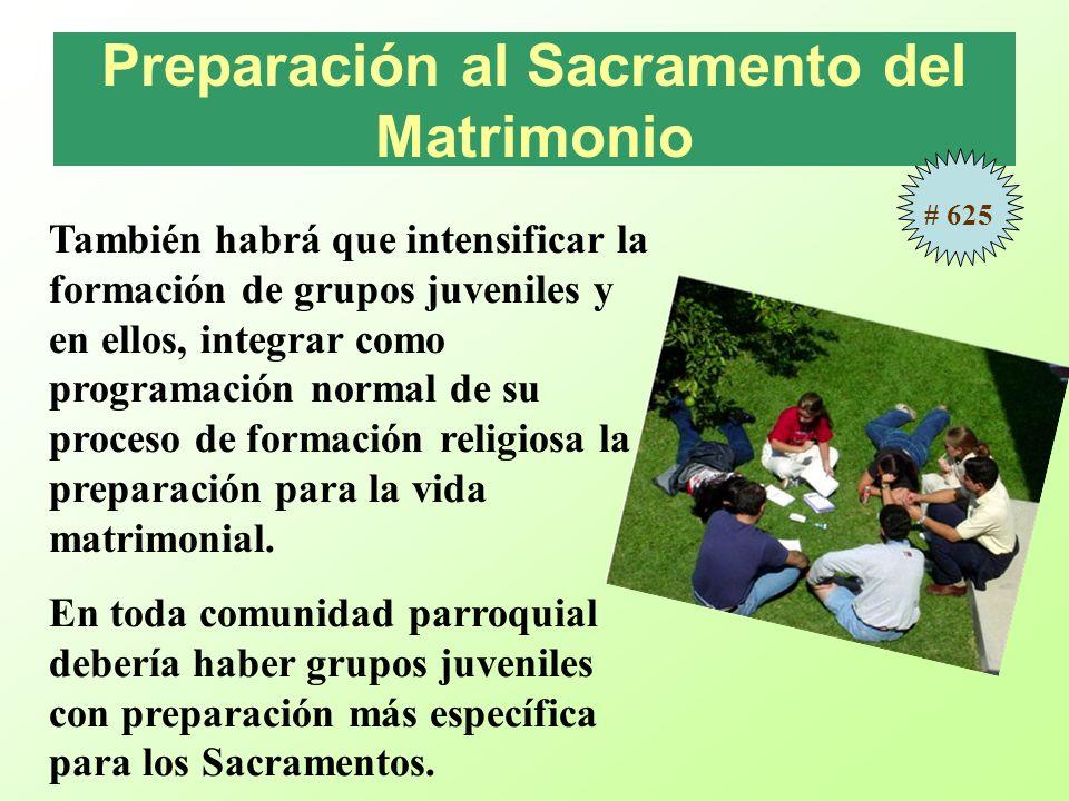 Preparación al Sacramento del Matrimonio También habrá que intensificar la formación de grupos juveniles y en ellos, integrar como programación normal de su proceso de formación religiosa la preparación para la vida matrimonial.