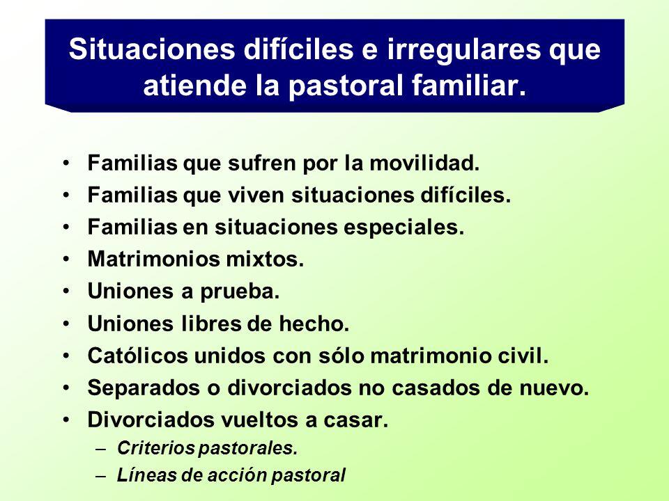 Situaciones difíciles e irregulares que atiende la pastoral familiar. Familias que sufren por la movilidad. Familias que viven situaciones difíciles.