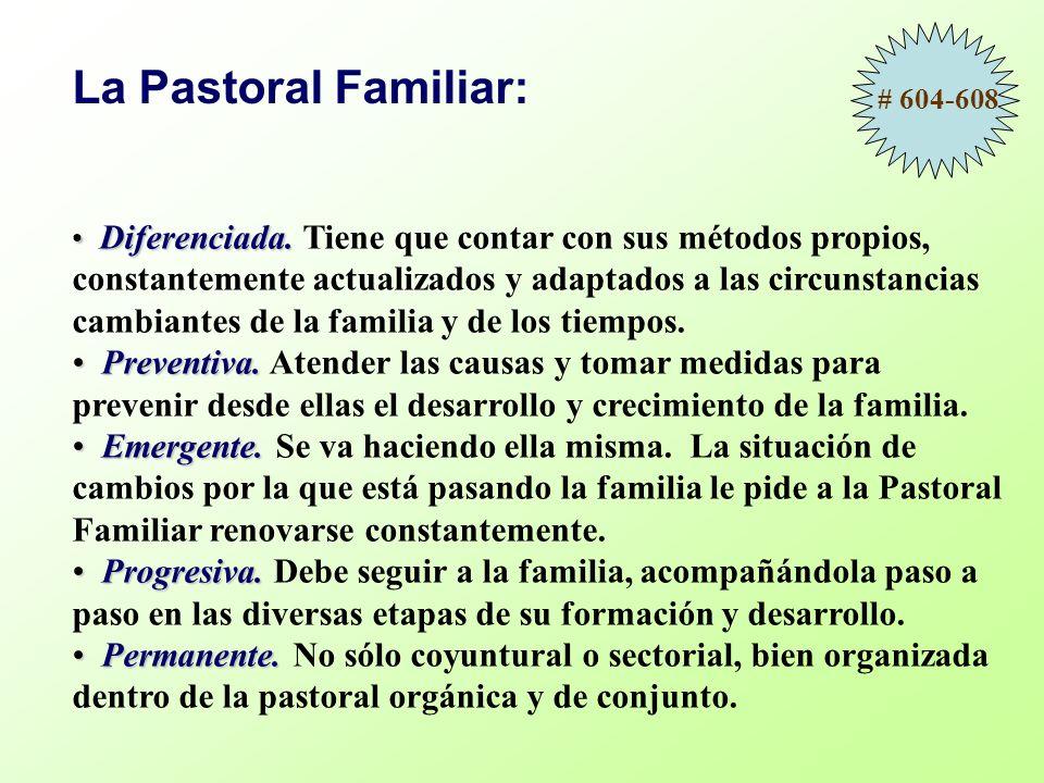 Los tiempos y modos de la pastoral familiar Preparación al sacramento del matrimonio –Preparación remota.
