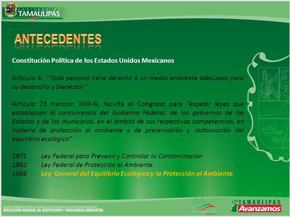 Constitución Política de los Estados Unidos Mexicanos Artículo 4: Toda persona tiene derecho a un medio ambiente adecuado para su desarrollo y bienest