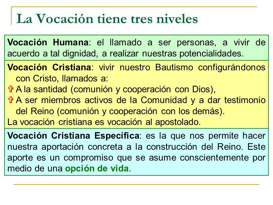 La Vocación tiene tres niveles Vocación Cristiana: vivir nuestro Bautismo configurándonos con Cristo, llamados a: A la santidad (comunión y cooperació