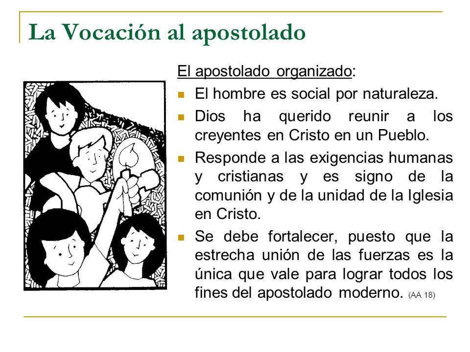 La Vocación al apostolado El apostolado organizado: El hombre es social por naturaleza. Dios ha querido reunir a los creyentes en Cristo en un Pueblo.