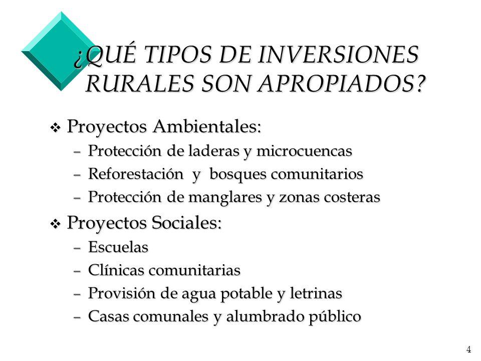 4 ¿QUÉ TIPOS DE INVERSIONES RURALES SON APROPIADOS.