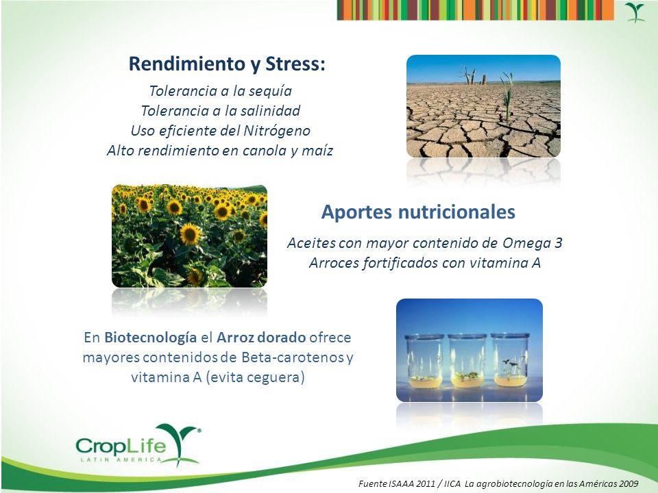 Cultivos biotecnológicos 2012 Tecnología para TODOS Fuente ISAAA 2012 Superficie mundial (28 países) América Latina: 66 millones de hectáreas Adopción por parte de pequeños agricultores Adopción de Europa