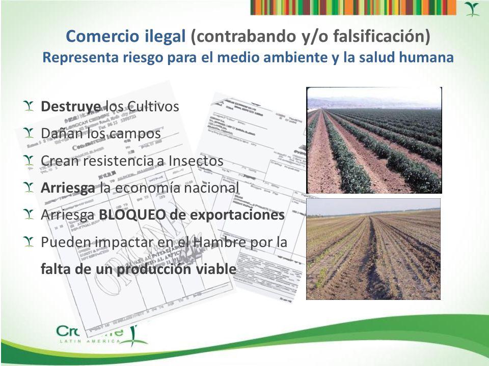 Comercio ilegal (contrabando y/o falsificación) Representa riesgo para el medio ambiente y la salud humana