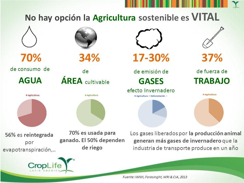 Alimentos para 9.3 millones en 2050 La agricultura deberá aumentar en un 85% su PRODUCCION ¿Qué se requiere para aumentar la producción de alimentos.