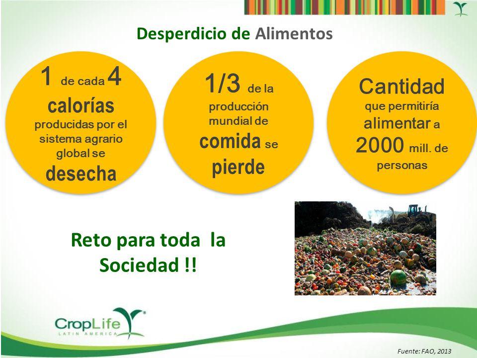 Fuente: PNUMA, UNEP, 2013 al territorio Mexicano 194.7MM ha al territorio Mexicano 194.7MM ha La tierra para producir la comida desechada Los desechos de comida anuales + de la mitad del cultivo mundial de cereales Desperdicio de Alimentos