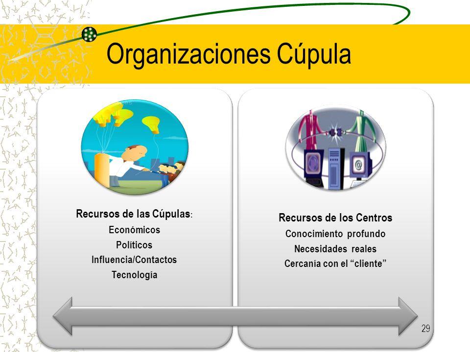 Organizaciones Cúpula Recursos de las Cúpulas : Económicos Políticos Influencia/Contactos Tecnología Recursos de los Centros Conocimiento profundo Necesidades reales Cercanía con el cliente 29