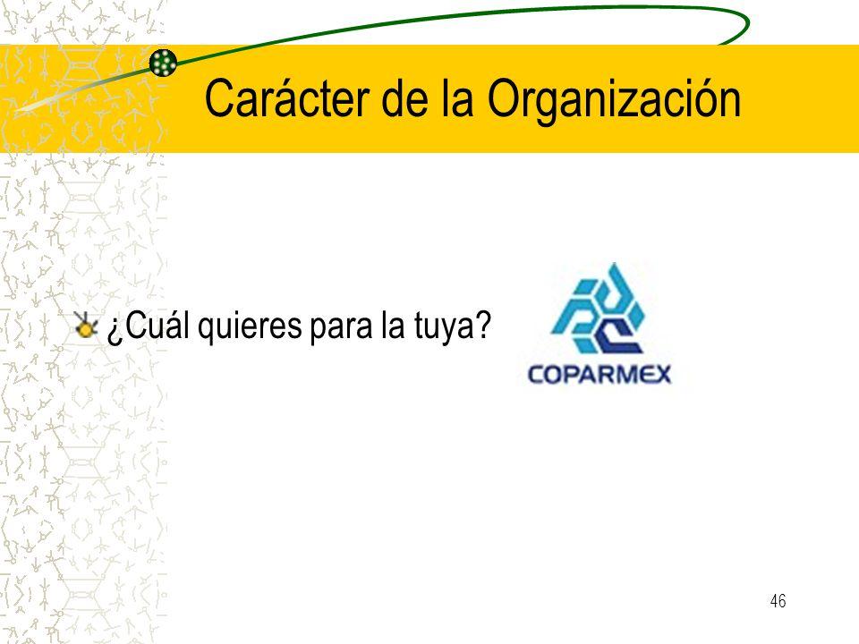 Carácter de la Organización ¿Cuál quieres para la tuya? 46