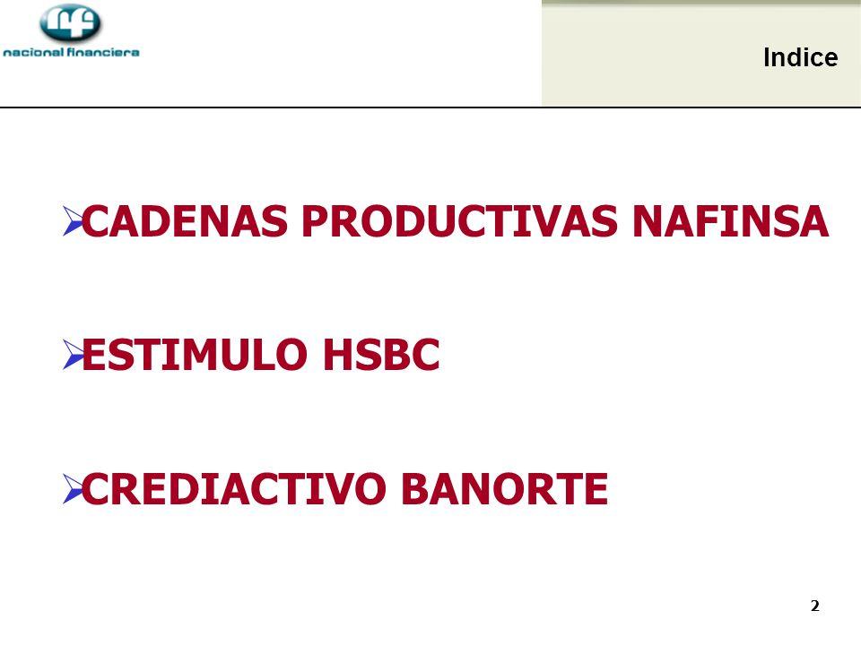 2 CADENAS PRODUCTIVAS NAFINSA ESTIMULO HSBC CREDIACTIVO BANORTE Indice