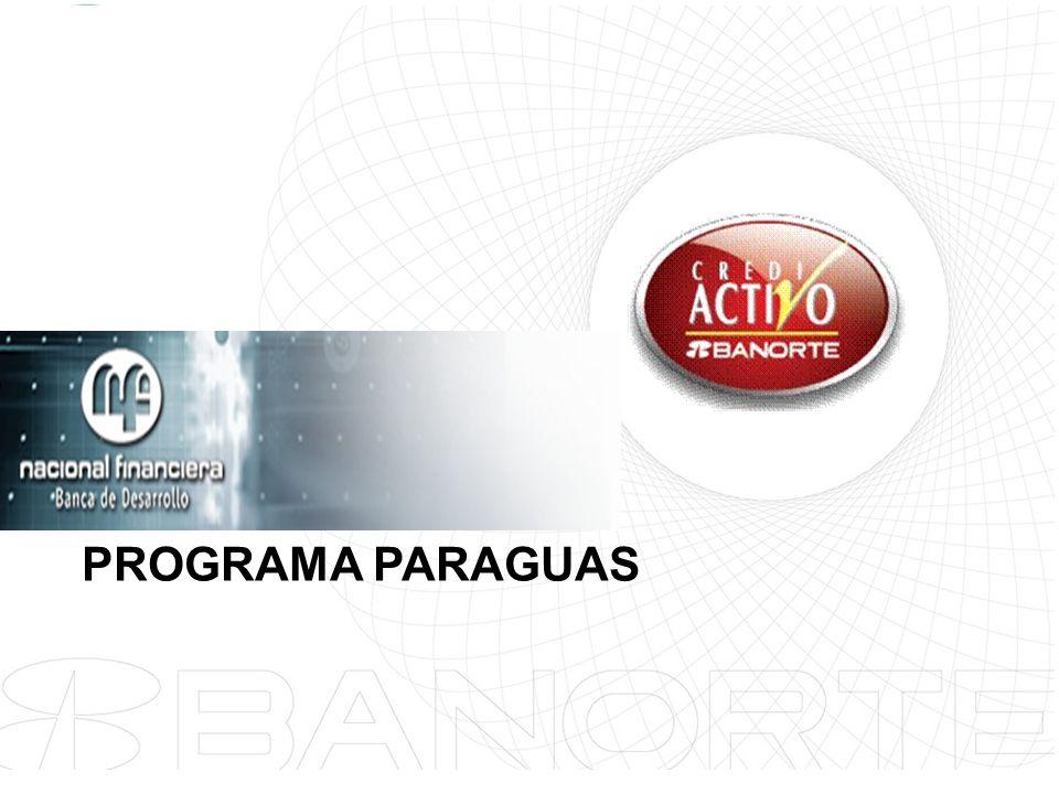 24 PROGRAMA PARAGUAS