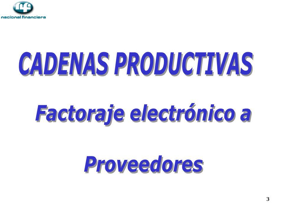 4 Cadenas Productivas Las CADENAS PRODUCTIVAS ha sido un producto de gran éxito para Nacional Financiera en los últimos 7 años, para lograr masividad y volumen de crédito, con mínimo riesgo para la Banca Comercial.