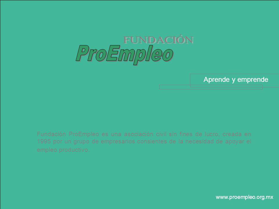 Fundación ProEmpleo es una asociación civil sin fines de lucro, creada en 1995 por un grupo de empresarios consientes de la necesidad de apoyar el empleo productivo.