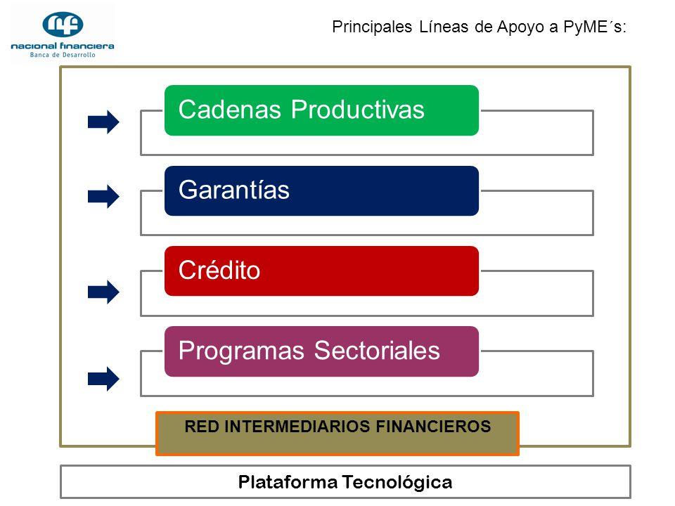 Principales Líneas de Apoyo a PyME´s: Cadenas ProductivasGarantíasCréditoProgramas Sectoriales RED INTERMEDIARIOS FINANCIEROS Plataforma Tecnológica