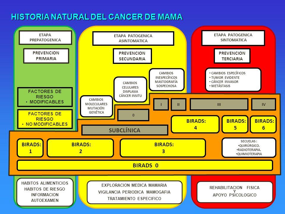 20 ETAPA PREPATOGENICA PREVENCION PRIMARIA PREVENCION SECUNDARIA ETAPA PATOGENICA ASINTOMATICA ETAPA PATOGENICA SINTOMATICA CAMBIOS MOLECULARES MUTACIÓN GENÉTICA CAMBIOS CELULARES DISPLASIA CÁNCER INSITU CAMBIOS INESPECÍFICOS MASTOGRAFÍA SOSPECHOSA SECUELAS : QUIRÚRGICO.