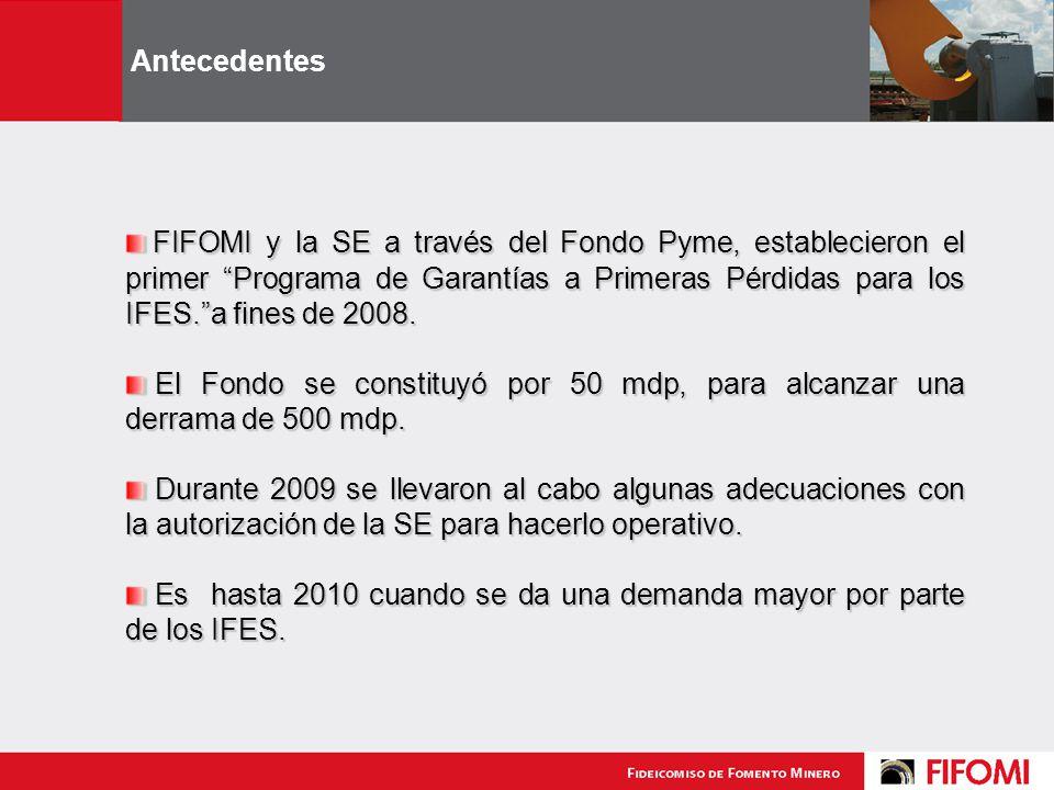 FIFOMI y la SE a través del Fondo Pyme, establecieron el primer Programa de Garantías a Primeras Pérdidas para los IFES.a fines de 2008.