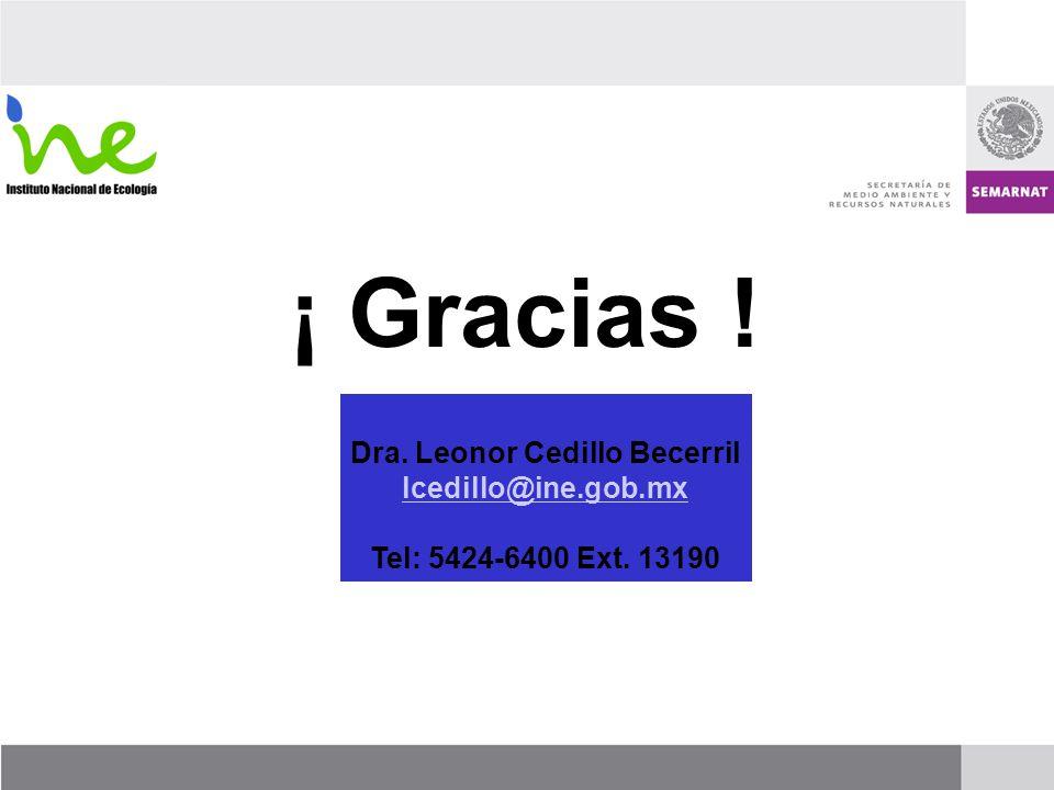 Dra. Leonor Cedillo Becerril lcedillo@ine.gob.mx Tel: 5424-6400 Ext. 13190 ¡ Gracias !