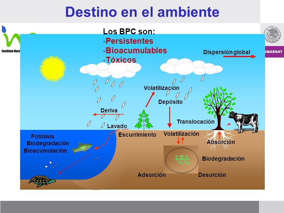 Destino en el ambiente AdsorciónDesorción Volatilización Lavado Translocación Depósito Dispersión global Volatilización Deriva Absorción Bioacumulació