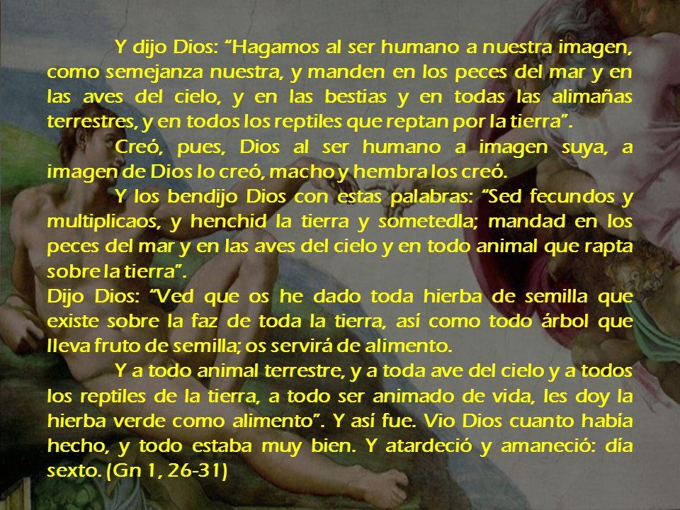 Y dijo Dios: Hagamos al ser humano a nuestra imagen, como semejanza nuestra, y manden en los peces del mar y en las aves del cielo, y en las bestias y