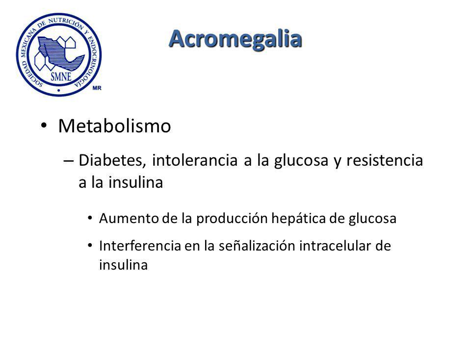 Acromegalia Metabolismo – Diabetes, intolerancia a la glucosa y resistencia a la insulina Aumento de la producción hepática de glucosa Interferencia e