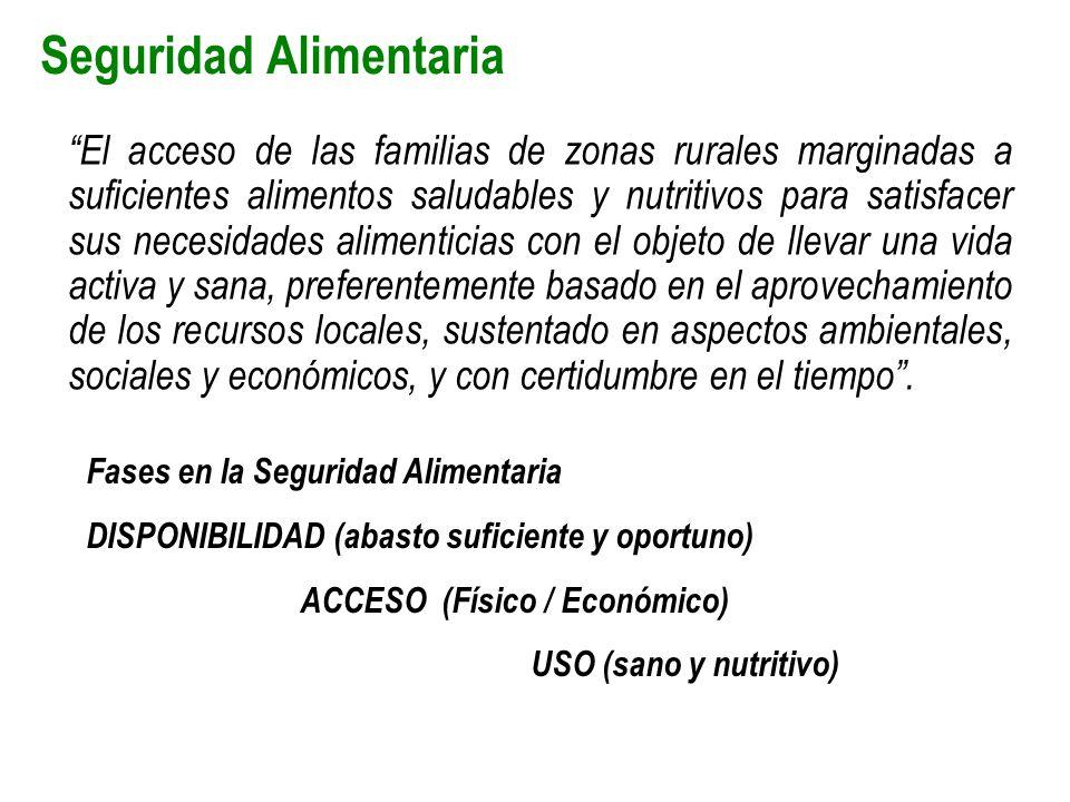 Seguridad Alimentaria El acceso de las familias de zonas rurales marginadas a suficientes alimentos saludables y nutritivos para satisfacer sus necesi