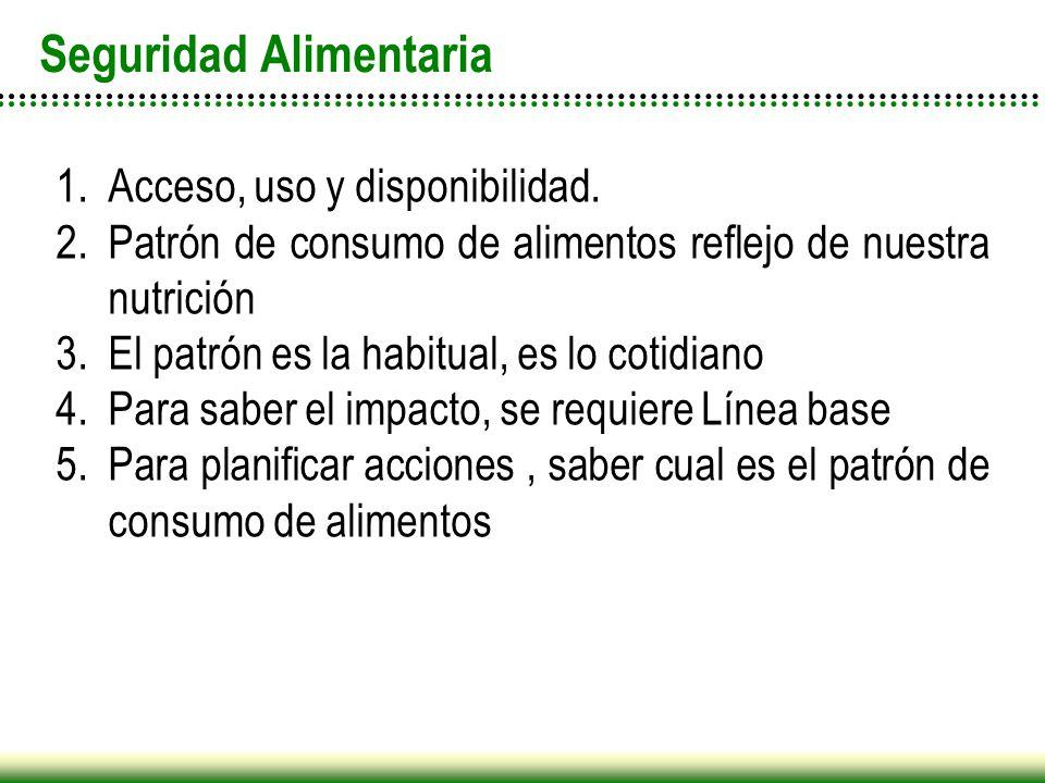 Seguridad Alimentaria 1.Acceso, uso y disponibilidad. 2.Patrón de consumo de alimentos reflejo de nuestra nutrición 3.El patrón es la habitual, es lo