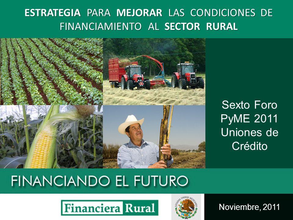 Objetivos de la Estrategia para mejorar las condiciones de financiamiento al sector rural ESTRATEGIA Mejorar el acceso al financiamiento en los sectores que no tiene acceso al crédito, poniendo especial atención en zonas marginadas y pequeños productores del medio rural.