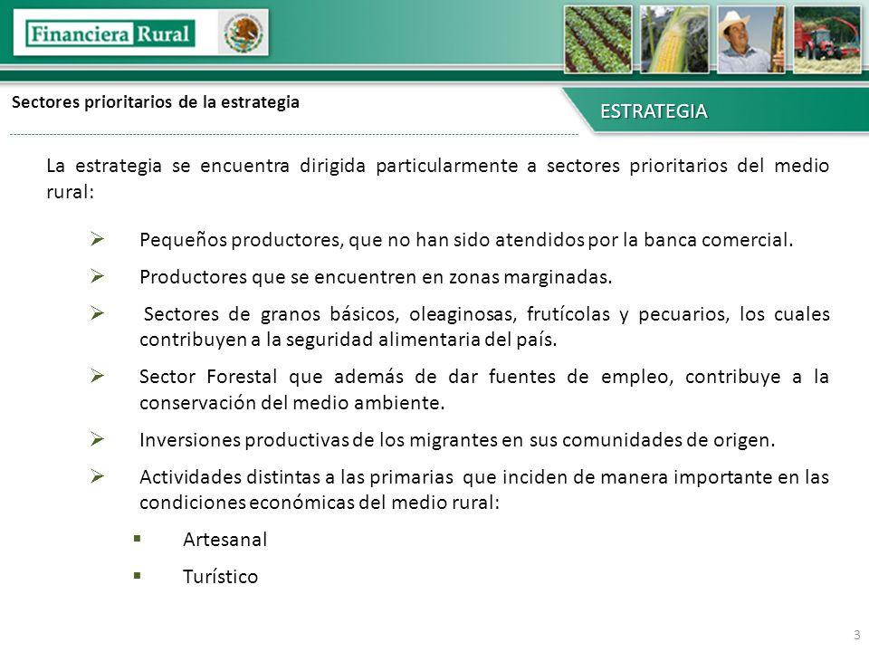 Sectores prioritarios de la estrategia ESTRATEGIA La estrategia se encuentra dirigida particularmente a sectores prioritarios del medio rural: Pequeño