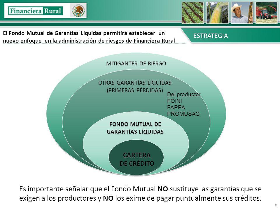 6 CARTERA DE CRÉDITO FONDO MUTUAL DE GARANTÍAS LÍQUIDAS OTRAS GARANTÍAS LÍQUIDAS (PRIMERAS PÉRDIDAS) MITIGANTES DE RIESGO El Fondo Mutual de Garantías
