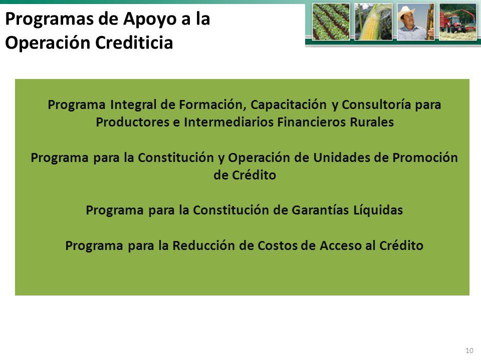 Programa Integral de Formación, Capacitación y Consultoría para Productores e Intermediarios Financieros Rurales Programa para la Constitución y Operación de Unidades de Promoción de Crédito Programa para la Constitución de Garantías Líquidas Programa para la Reducción de Costos de Acceso al Crédito 10 Programas de Apoyo a la Operación Crediticia