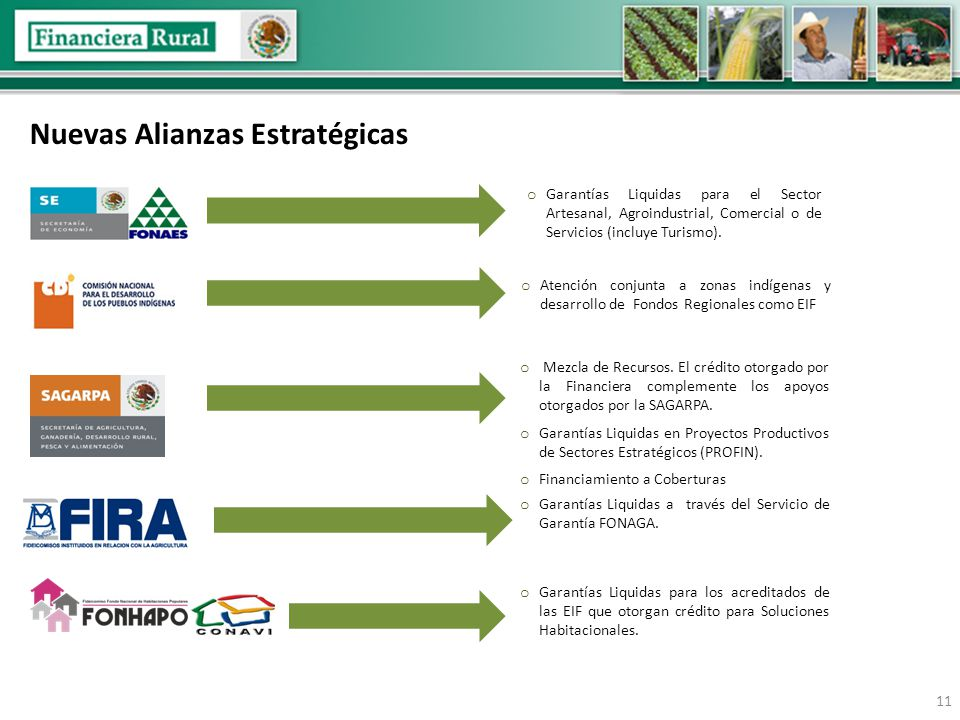 Nuevas Alianzas Estratégicas 11 o Atención conjunta a zonas indígenas y desarrollo de Fondos Regionales como EIF o Garantías Liquidas para el Sector Artesanal, Agroindustrial, Comercial o de Servicios (incluye Turismo).