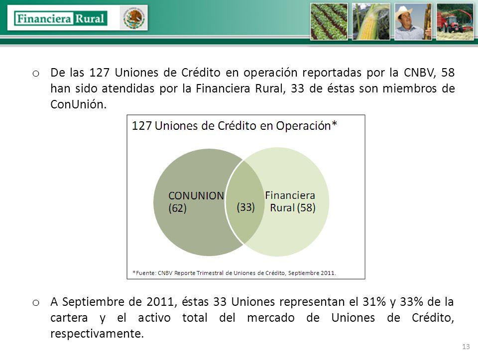 13 o De las 127 Uniones de Crédito en operación reportadas por la CNBV, 58 han sido atendidas por la Financiera Rural, 33 de éstas son miembros de ConUnión.