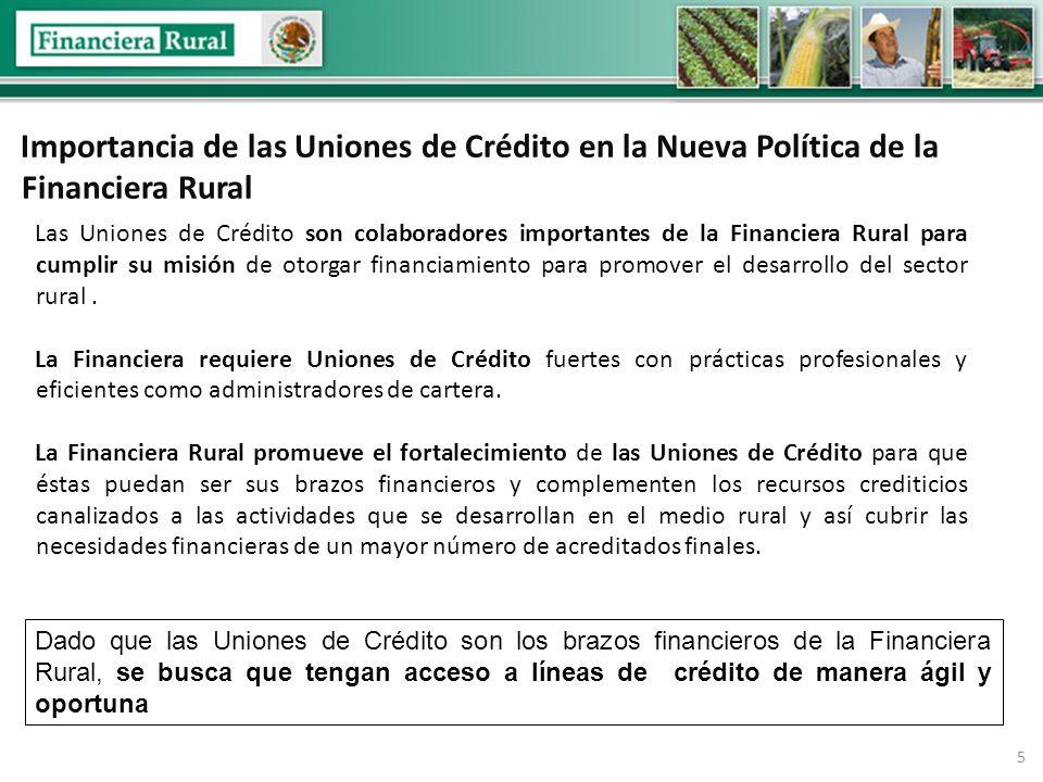 5 Importancia de las Uniones de Crédito en la Nueva Política de la Financiera Rural Las Uniones de Crédito son colaboradores importantes de la Financiera Rural para cumplir su misión de otorgar financiamiento para promover el desarrollo del sector rural.