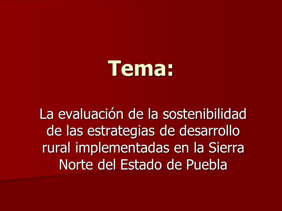 Tema: La evaluación de la sostenibilidad de las estrategias de desarrollo rural implementadas en la Sierra Norte del Estado de Puebla