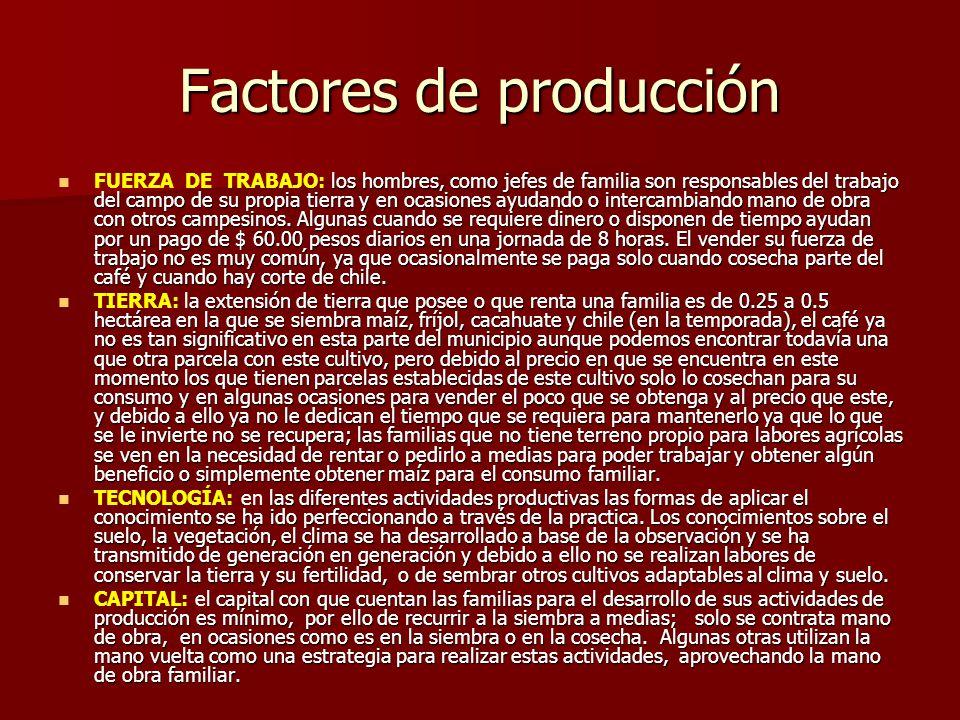 Factores de producción los hombres, como jefes de familia son responsables del trabajo del campo de su propia tierra y en ocasiones ayudando o intercambiando mano de obra con otros campesinos.