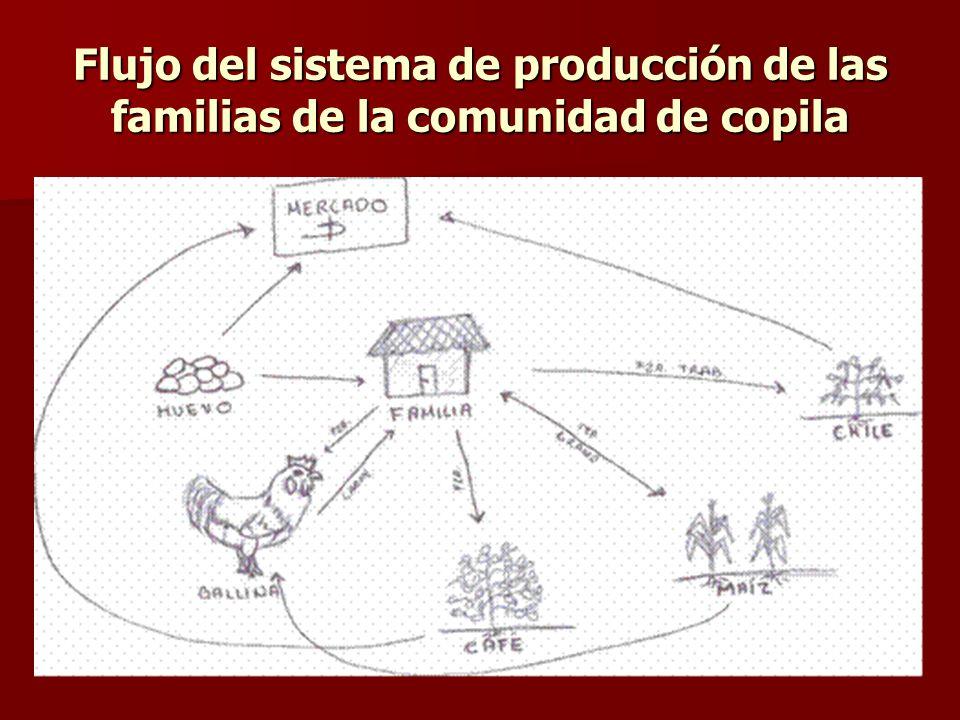 Flujo del sistema de producción de las familias de la comunidad de copila