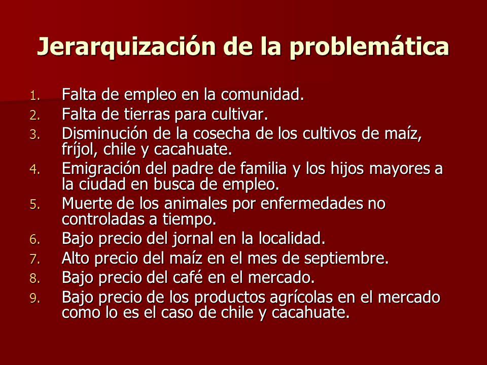 Jerarquización de la problemática 1. Falta de empleo en la comunidad. 2. Falta de tierras para cultivar. 3. Disminución de la cosecha de los cultivos